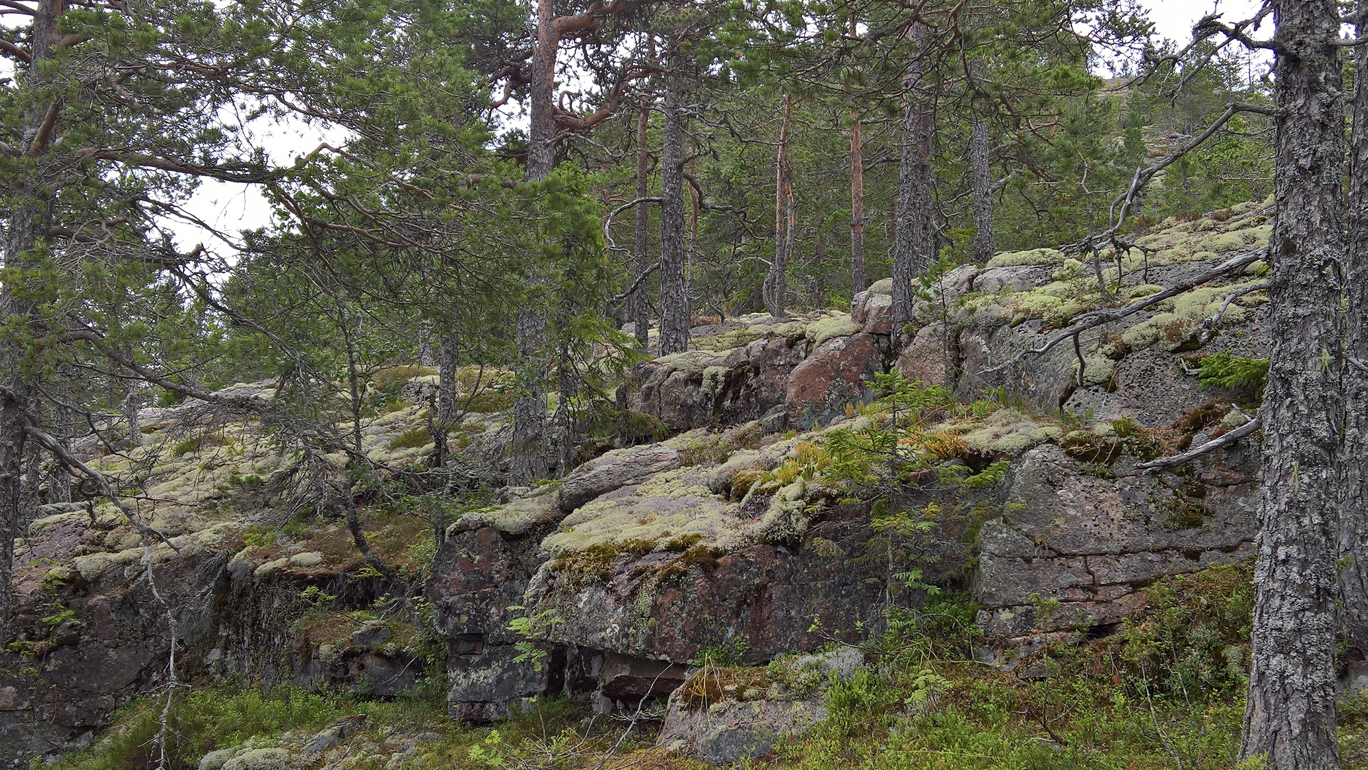 Skuleberget