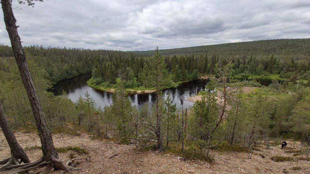 Wildlife i Finland Oulanka nationalpark